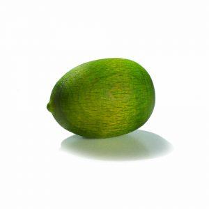 Duftfrucht Melone grün