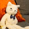 Katze Kuscheltier