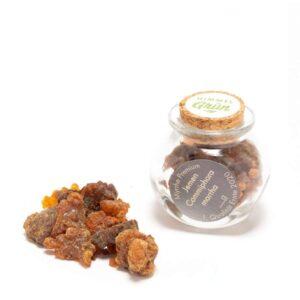 Myrrhe aus Jemen im Glas